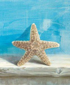 Dipinto di una stella marina con sfondo azzurro