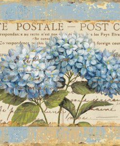 Cartolina con disegnate delle dafne
