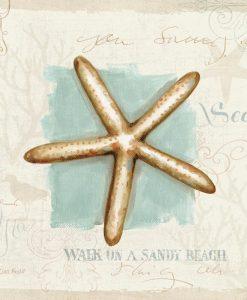 Quadretto con stella marina e scritte motivazionali