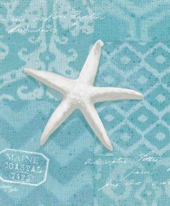 Stella marina su sfondo decorativo
