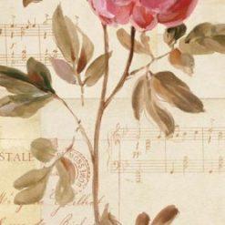 Rosa decorativa