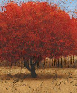 Alberi dalle foglie arancio