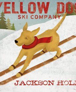 """Cane sugli sci della compagnia """"yellow dog"""""""