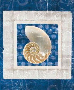 Quadretto con nautilus color bianco e blu