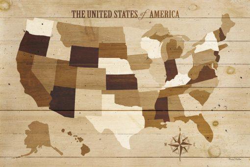 Cartina degli stati uniti su legno