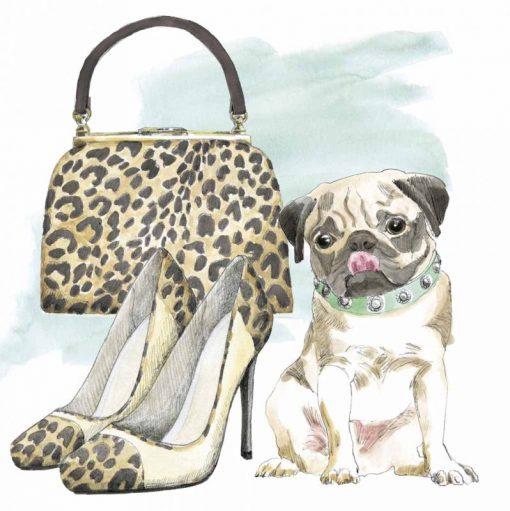 Cagnolino con accessori alla moda