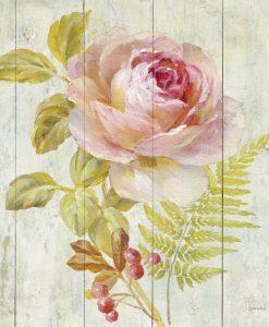 Romantico dipinto di una rosa