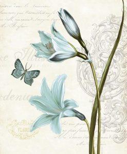 Lillà blu su sfondo decorato