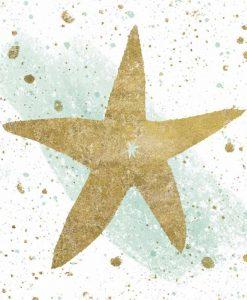 Sagoma di una stella marina con effetti grafici