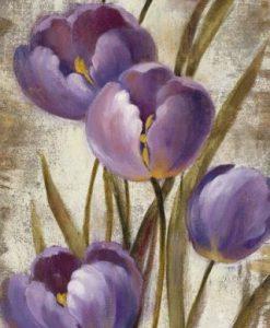 Stelo di tulipani color viola