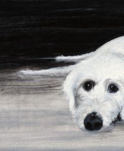 Ritratto di un cane bianco