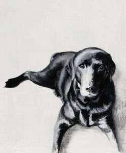 Ritratto di un cane nero