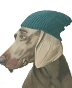 Ritratto di un bracco con berretto invernale