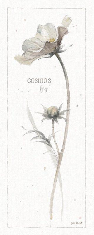 Acquerello di un fiore in stile botanico