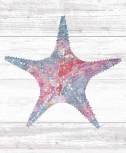 Stella marina dipinto su legno chiaro