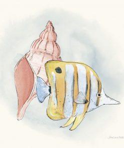 Composizione marina con pesce e conchiglia