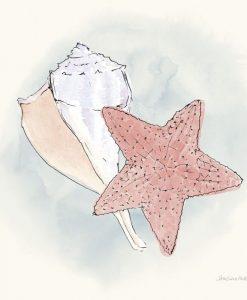 Composizione marina con stella marina e conchiglia