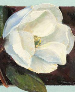 Fiore di magnolia su sfondo nero e azzurro