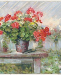 Vasi di gerani su un tavolino in giardino