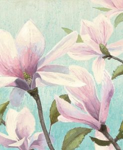 Acquerello di due fiori grigi su sfondo bianco