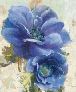 Dettaglio di anemoni color blu