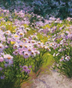 Aiuola con fiori di campo rosa