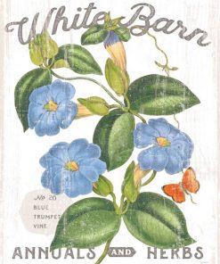 Composizione in stile botanico con fiore azzurro