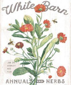 Composizione in stile botanico con fiorellini rossi