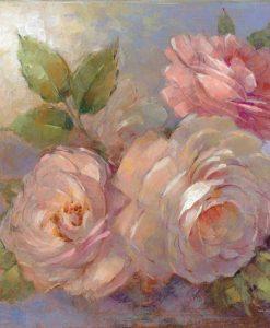 Dettaglio di rose color rosa
