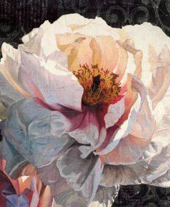 Dipinto di una peonia con effetto contrasto