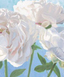 Dipinto di peonie bianche con sfumature rosate su sfondo azzurro